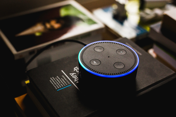 Voice search being used with an Alexa